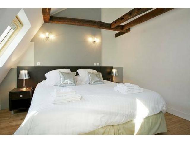 Comfortable & Magnificient Apartment Louvre